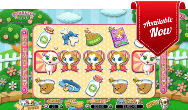 Purrfect Pets Slot at Golden Euro